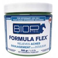 BIOPTEQ FORMULA FLEX LINIMENT, 500 G
