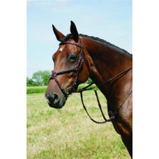 VESPUCCI SINGLE CROWN SQUARE RAISED FIGURE 8 BRIDLE