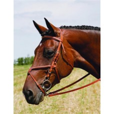VESPUCCI SINGLE CROWN FANCY RAISED FIGURE 8 BRIDLE
