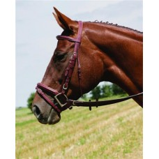 VESPUCCI SINGLE CROWN PLAIN RAISED BRIDLE with FLASH