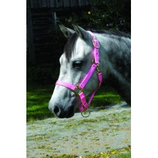 CAVALIER SUPER SOFT NYLON HORSE HALTER