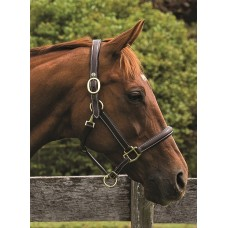 HDR KUSHY PLAIN RAISED HALTER WITH FLAT CHEEK PIECES