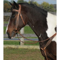SIERRA HARNESS & TURTLE WIDE BROWBAND HEADSTALL