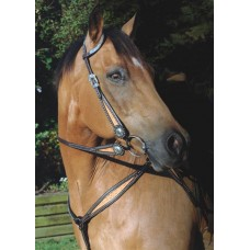 SIERRA COOKIES AND CREAM DOUBLE EAR HEADSTALL, DARK BROWNWITH LIGHT OIL