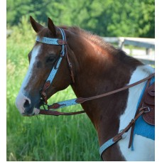 SIERRA COLOUR TURTLE HEADSTALL