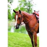 SIERRA BROW SHOW HEADSTALL with SPOTS & ROSETTES, SOFTCHESTNUT