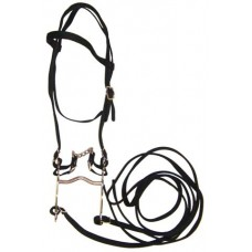 SIERRA WEB BRIDLE with REINS & BIT