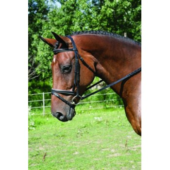 HDR ADVANTAGE WHITE LINED DRESSAGE BRIDLE, WITH LACED REIN S