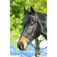 HDR ADVANTAGE SQUARE RAISED SNAFFLE BRIDLE with LACED REINS