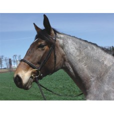 HDR ADVANTAGE DRAFT BRIDLE with 63 inch REINS