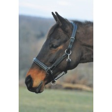 HDR PRO STRESS FREE FANCY STITCH PADDED HALTER