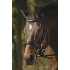 HDR PADDED RAISED DRESSAGE BRIDLE with JAWBAND, CRANK, FLASHand WEB REINS