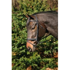 HDR DRESSAGE BRIDLE with CRANK, FLASH and WEB REINS
