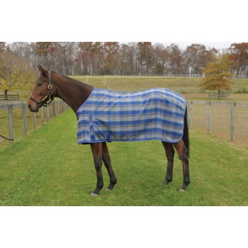 CENTURY ASHTON PLAID WOOL DRESS SHEET