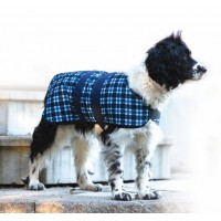 CENTURY TIGER DOG COAT