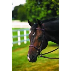 HDR PLAIN RAISED BRIDLE