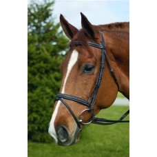 HdR EVENT BRIDLE with FLASH ATTACHMENT