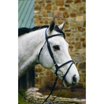 HdR DRESSAGE BRIDLE with WHITE PADDING