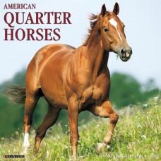 2018 AMERICAN QUARTER HORSES CALENDAR