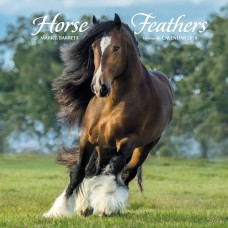 2018 HORSE FEATHERS CALENDAR