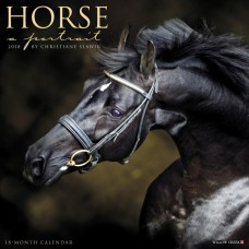 2018 HORSE: A PORTRAIT CALENDAR
