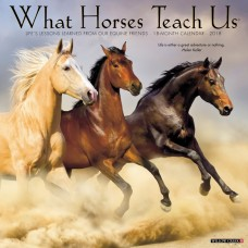 2018 WHAT HORSES TEACH US CALENDAR