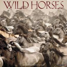 2018 WILD HORSES CALENDAR