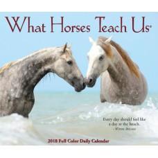 2018 WHAT HORSES TEACH US BOX CALENDAR