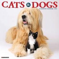 2019 CATS & DOGS CALENDAR