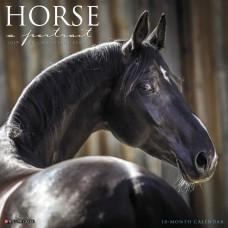 2019 HORSE: A PORTRAIT CALENDAR
