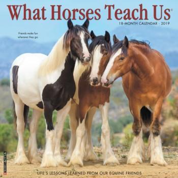 2019 WHAT HORSES TEACH US CALENDAR