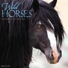 2019 WILD HORSES CALENDAR