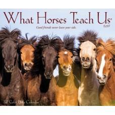 2019 WHAT HORSES TEACH US DAILY DESK CALENDAR