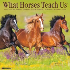 2020 WHAT HORSES TEACH US CALENDAR