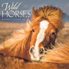 2020 WILD HORSES CALENDAR