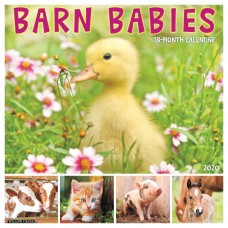 2020 BARN BABIES CALENDAR