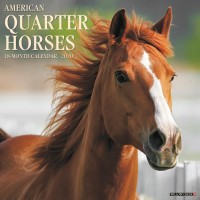 2020 AMERICAN QUARTER HORSES CALENDAR