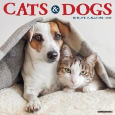 2020 CATS & DOGS CALENDAR