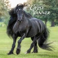 2020 GYPSY VANNER HORSE CALENDAR