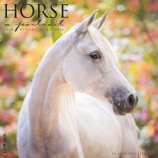 2020 HORSE: A PORTRAIT CALENDAR