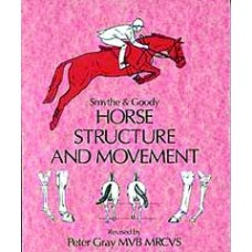 HORSE STRUCTURE & MOVEMENT