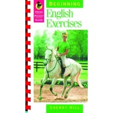 BEGINNING ENGLISH EXERCISES