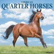 2022 AMERICAN QUARTER HORSES CALENDAR