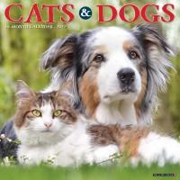 2022 CATS & DOGS CALENDAR