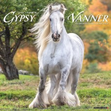 2022 GYPSY VANNER HORSE CALENDAR