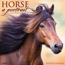 2022 HORSE: A PORTRAIT CALENDAR