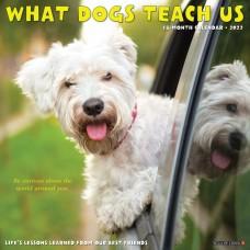 2022 WHAT DOGS TEACH US CALENDAR