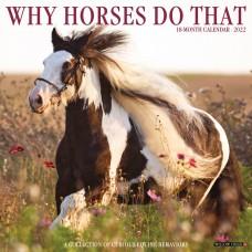 2022 WHY HORSES DO THAT CALENDAR