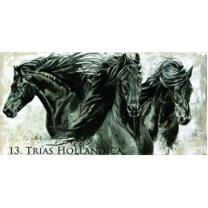 ELISE GENEST GREETING CARD, TRIAS HOLLANDICA
