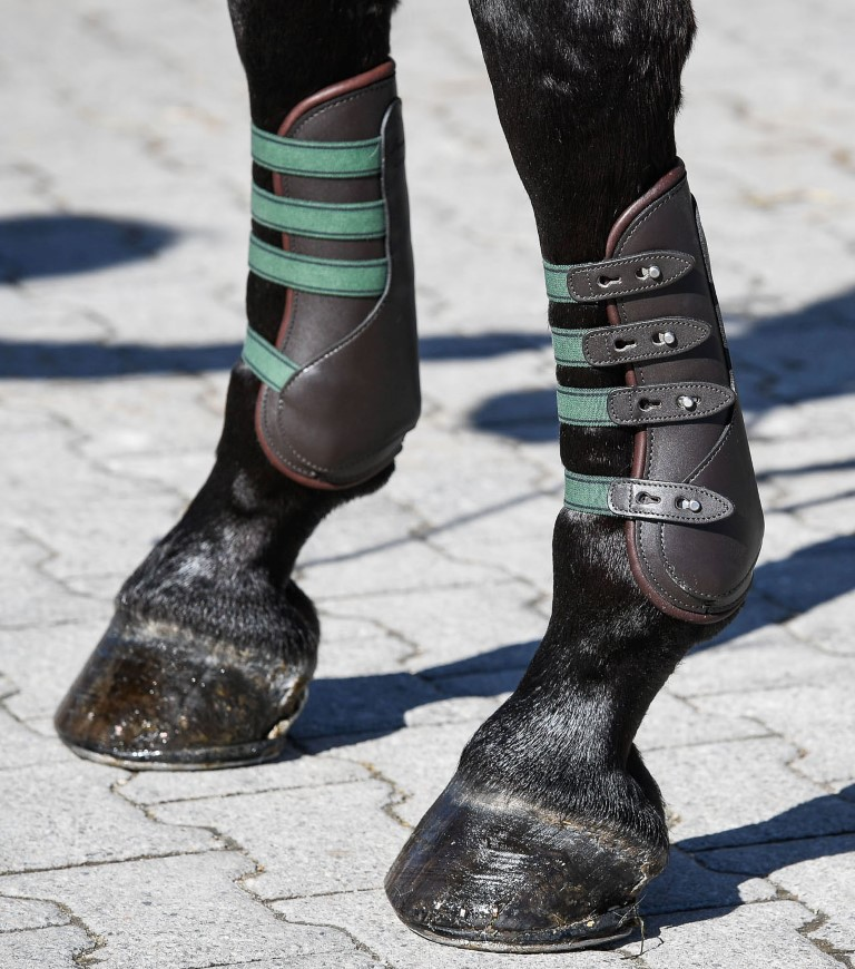 Horse Boots. Amerigo fetlock and tendon boots feature calf skin lining and  fastenings for quick and easy fitting. Designed in conjunction with World  Class ... e8b89a09a7ccd